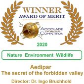 Aedipar ® Accolade Global Film Competition - Winner